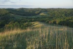 Runkel preserve sunrise