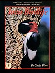 Iowa Birdlife by Gladys Black