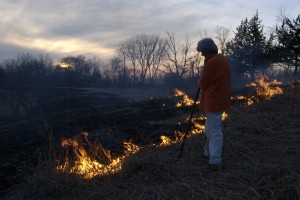 Margaret Stone tends a dying prairie fire.